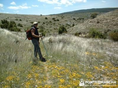 Barranco de Borbocid - trekking y hiking; senderismo y montaña singles madrid